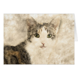 Kittys Full Attention | Abstract | Watercolor Card