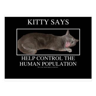 kittysays postcard