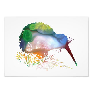 Kiwi Bird Art Photo Print