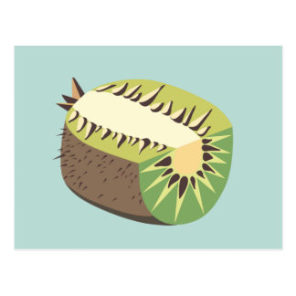 Kiwi fruit illustration postcard