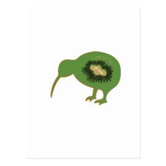kiwi nz kiwifruit postcard