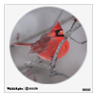 KMCphoto Cardinal Decal