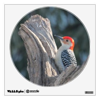 KMCphoto Redbellied Woodpecker Decal