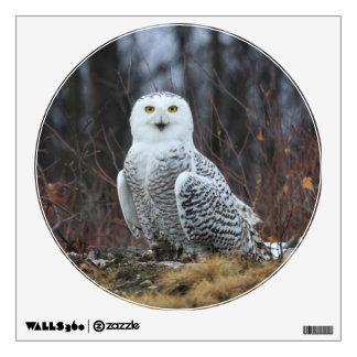 KMCphoto SNOWY OWL Wall Sticker