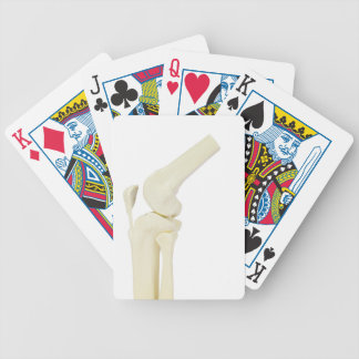 Knee joint model of human leg bicycle playing cards