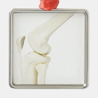 Knee joint model of human leg Silver-Colored square ornament