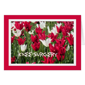 Knee Surgery Card, Red White Tulips Card