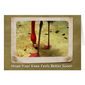 Knee Surgery Get Well Soon Pink Flamingo Card