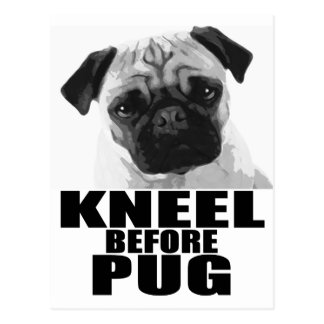 Kneel Before Pug Postcard