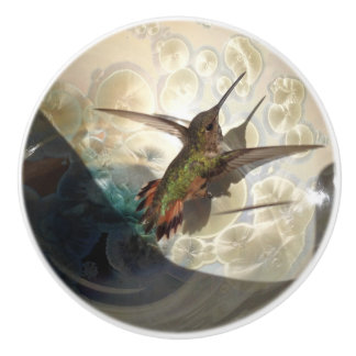 Knob with photograph close up of a hummingbird
