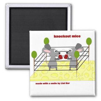 knockout mice magnet
