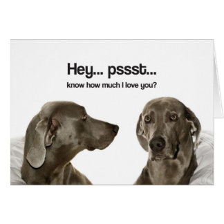 Know How Much I Love You? (Weimaraner) Card