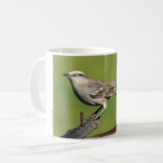Know-pity-field Coffee Mug