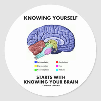 Knowing Yourself Starts With Knowing Your Brain Classic Round Sticker