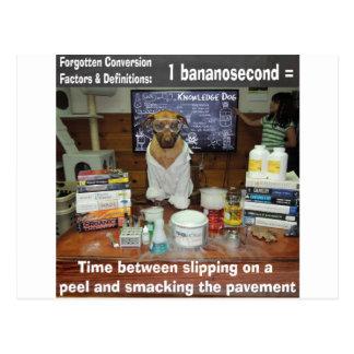 Knowledge Dog Forgotten Conversions Bananosecond Postcard