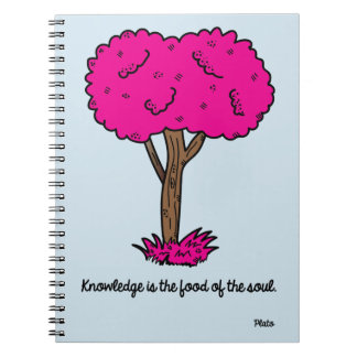 Knowledge Notebooks