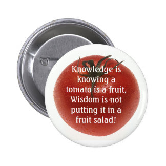 Knowlege is Not Always Logic Pinback Button