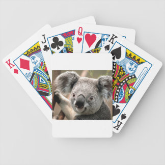 koala a unique animal bicycle playing cards