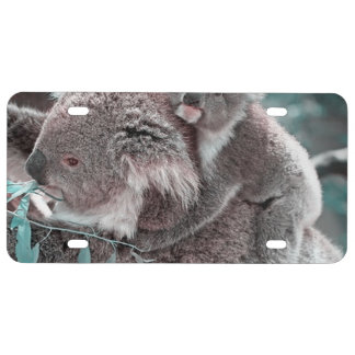 koala baby and mummy license plate
