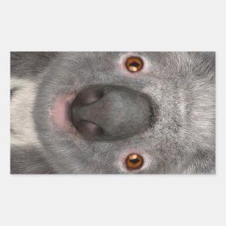 Koala Bear