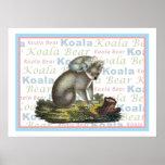 Koala Bear and Baby Poster