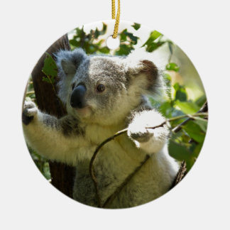 Koala Bear Aussi Safari Peace Love Nature Destiny Ceramic Ornament