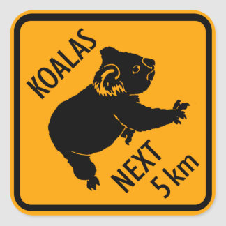 Koala Bear Australia Sign (pack of 6/20) Square Sticker