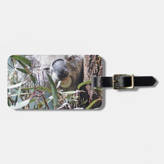 Koala bear bag tag