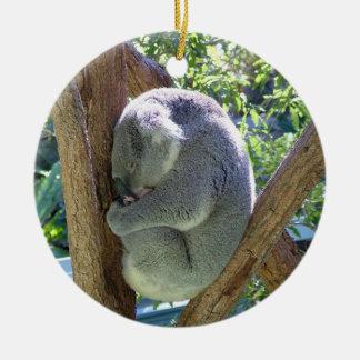 Koala Bear Ceramic Ornament