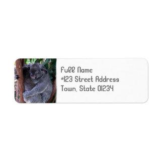 Koala Bear Cuddle Return Address Label