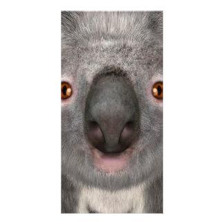 Koala Bear Customized Photo Card