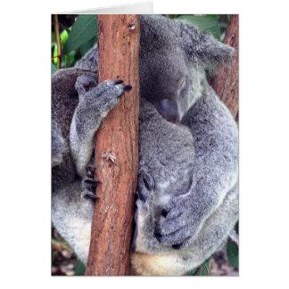 Koala Bear Family Greeting Cards