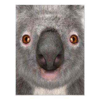 Koala Bear Magnetic Invitations