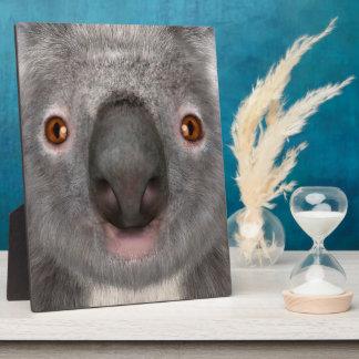 Koala Bear Plaque