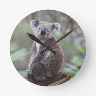Koala Bear Safari Jungle Outback Congratulations Round Clock
