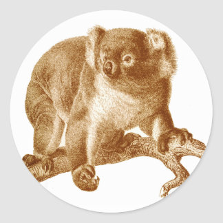 Koala Bear Stickers