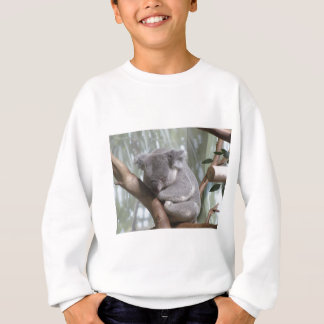 koala bear sweatshirt