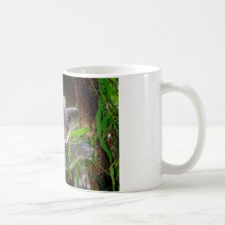 Koala Bears Aussi Outback Destiny Nature Coffee Mug