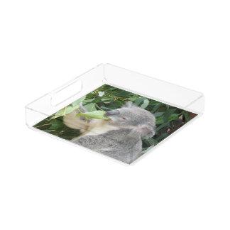 Koala Eating Gum Leaf Acrylic Tray