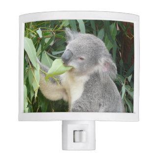 Koala Eating Gum Leaf Night Lites