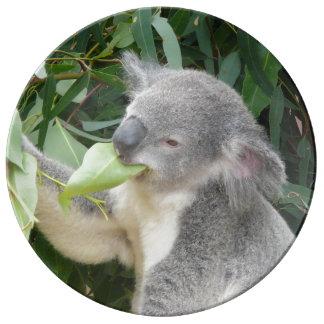 Koala Eating Gum Leaf Plate
