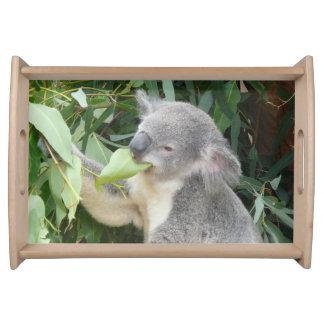 Koala Eating Gum Leaf Serving Tray