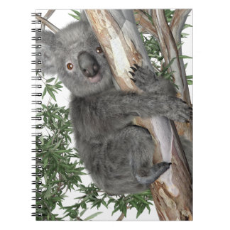 Koala in a Tree Notebooks