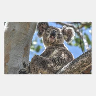 KOALA IN TREE AUSTRALIA ART EFFECTS
