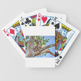 KOALA IN TREE AUSTRALIA ART EFFECTS BICYCLE PLAYING CARDS