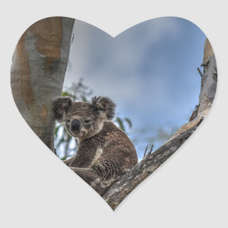 KOALA IN TREE AUSTRALIA ART EFFECTS HEART STICKER