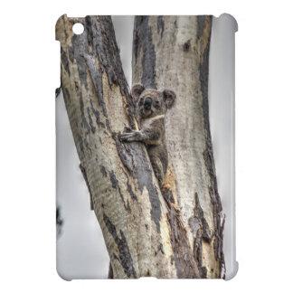KOALA IN TREE AUSTRALIA ART EFFECTS iPad MINI COVERS