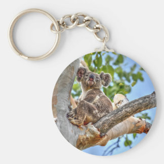 KOALA IN TREE AUSTRALIA ART EFFECTS KEYCHAIN
