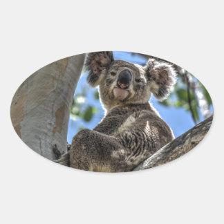 KOALA IN TREE AUSTRALIA ART EFFECTS OVAL STICKER