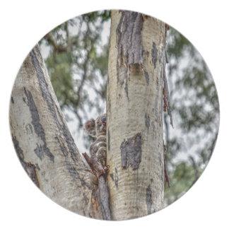 KOALA IN TREE AUSTRALIA ART EFFECTS PARTY PLATES